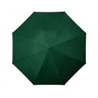 Zaļš lietussargs Nr. 151/13